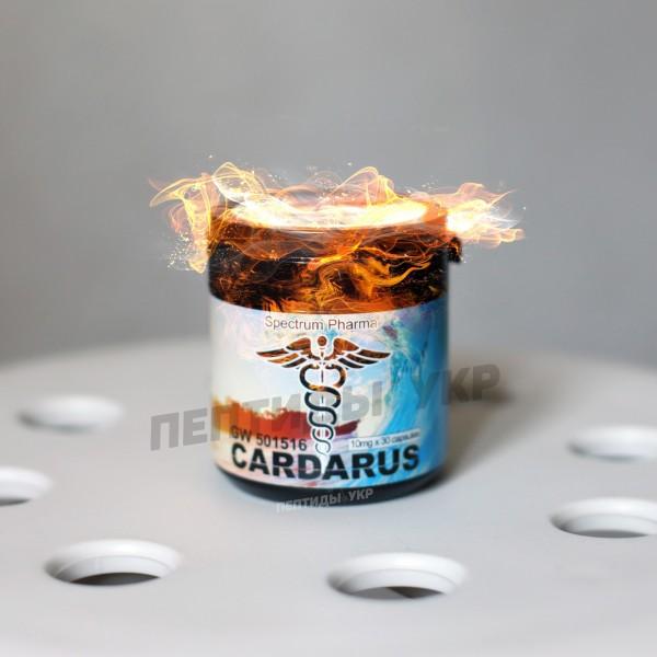 CARDARUS Cardarine Кардарин GW501516 Кардарол