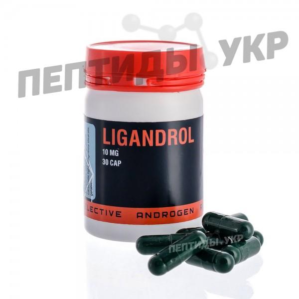 Ligandrol (Лигандрол, LGD-4033)